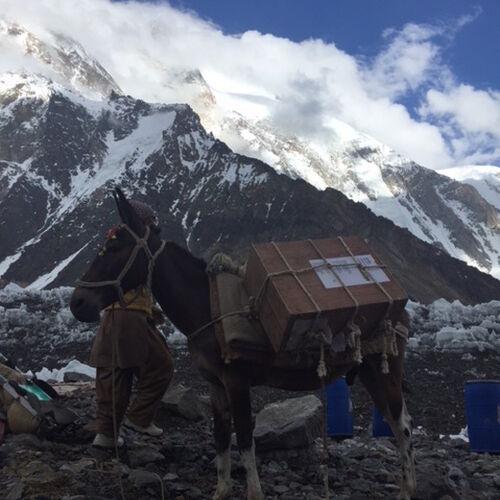 K2 Mule